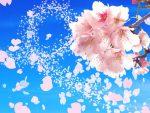 卒業式のネイルとは★袴はピンクや桜!スーツはフレンチがおすすめ