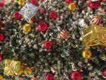 クリスマスネイルのやり方!ジェルやマニュキュアでもセルフで簡単可愛い